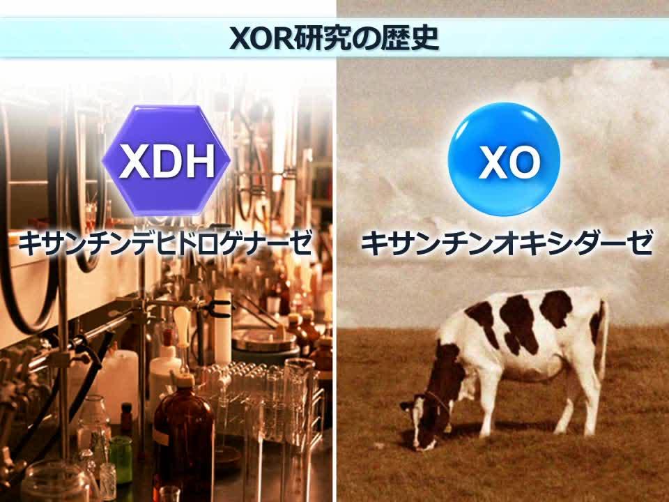 第3回 XORとは?